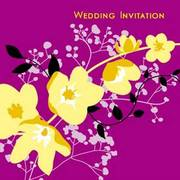paperhello wedding invitations and social stationery